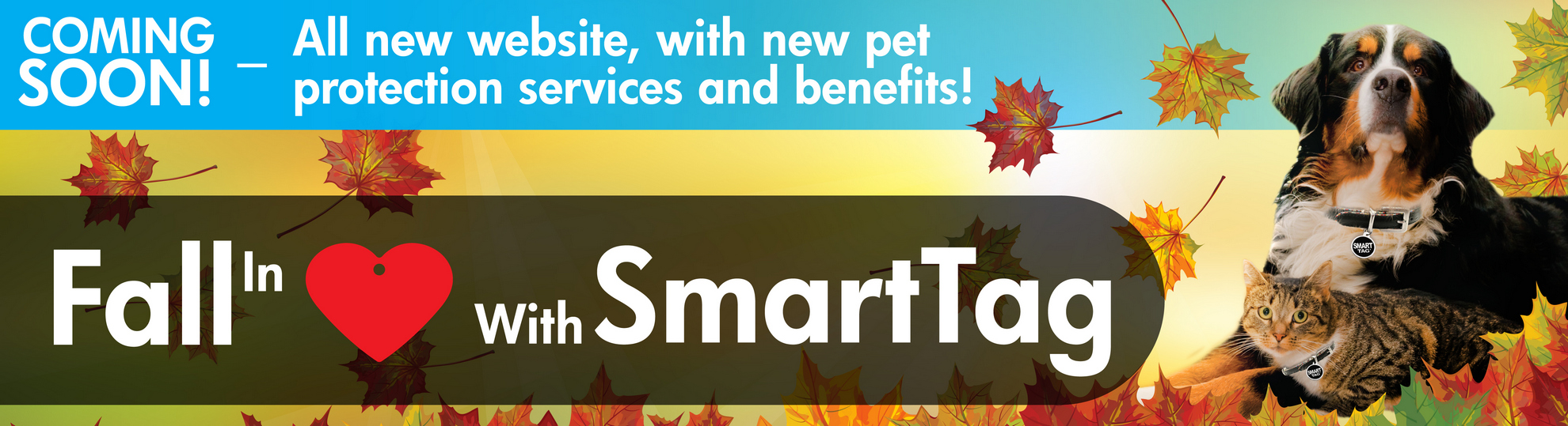 Fall in love with SmartTag